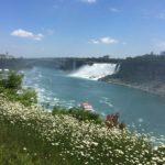 カナダ 旅行記 〜トロント、ナイアガラの滝、ナイアガラオンザレイク